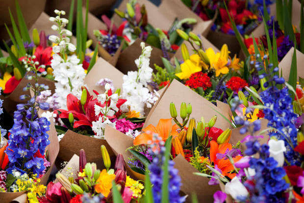 The Bloemenmarkt or floating flower market in Amsterdam